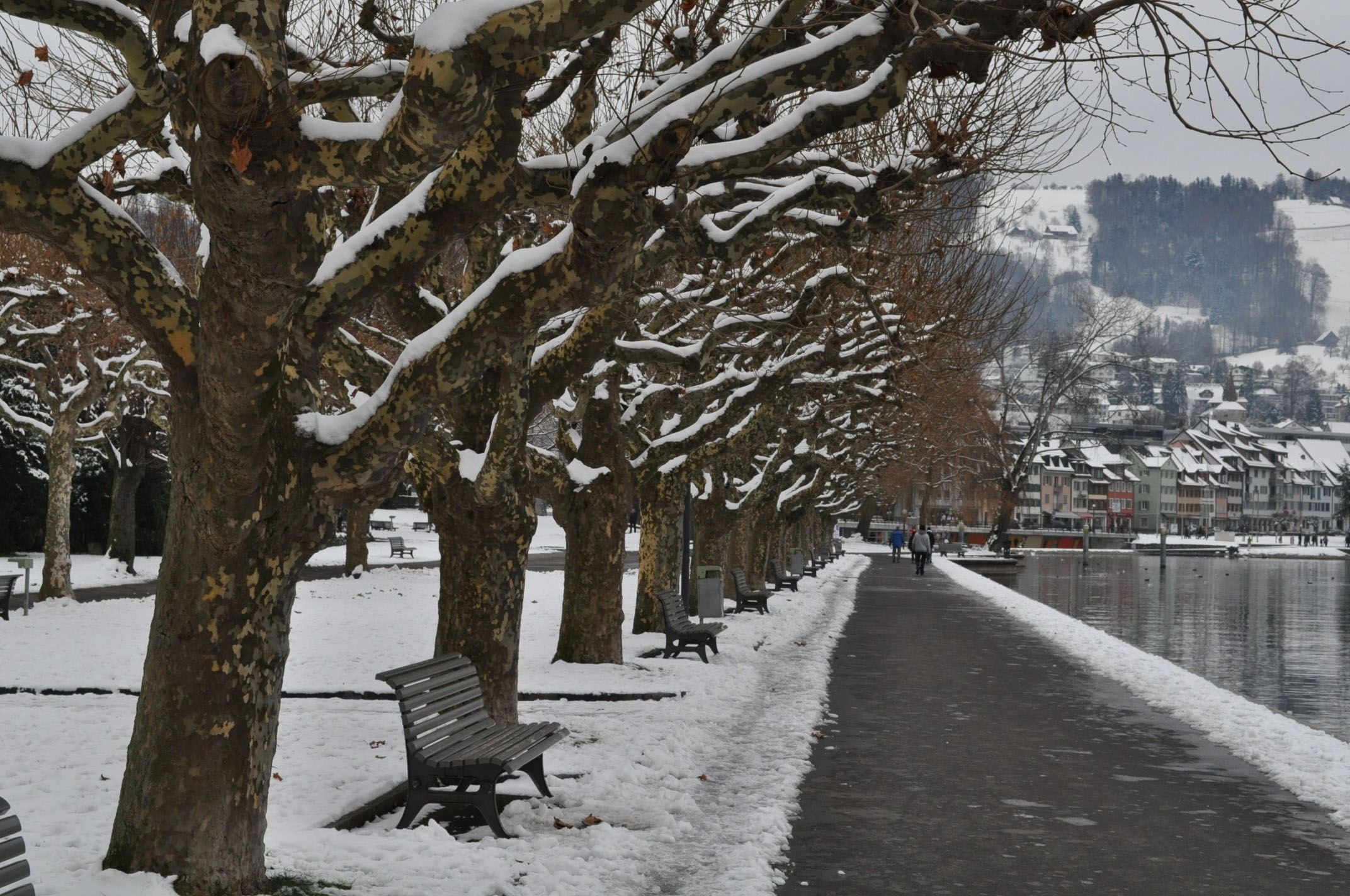 Vorstadt-Quai im Winter / Switzerland, City of Zug, Zug