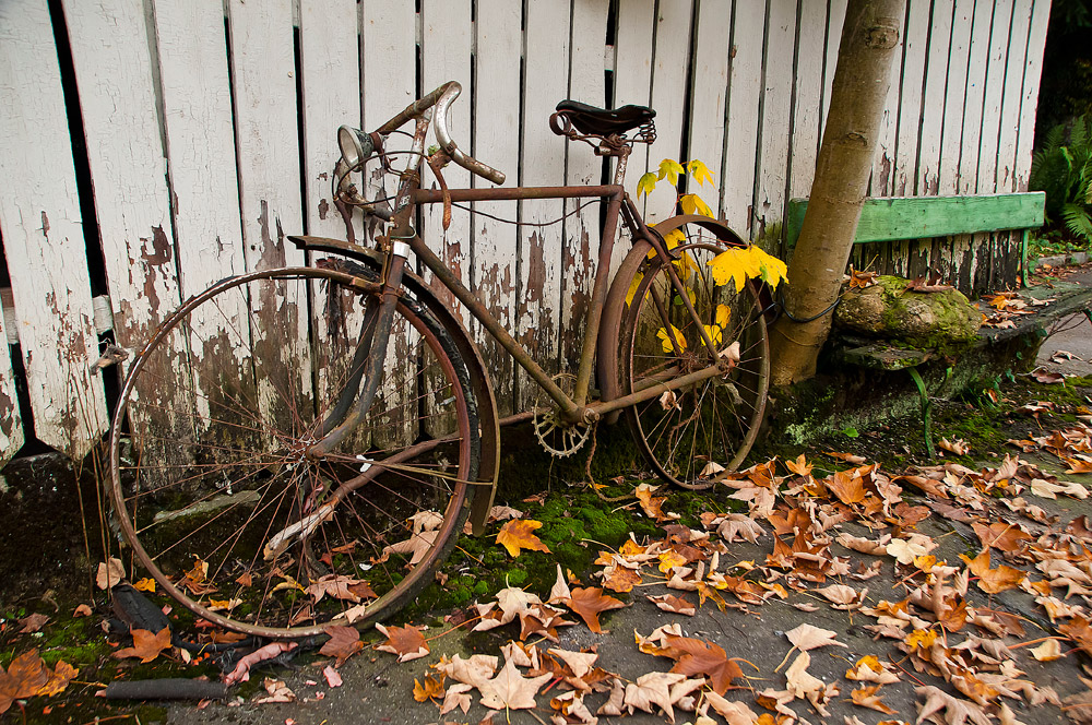 Rostiges Fahrrad im Herbst